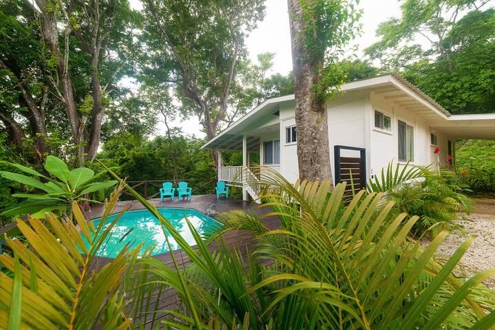 Surf Paradise Jungle House