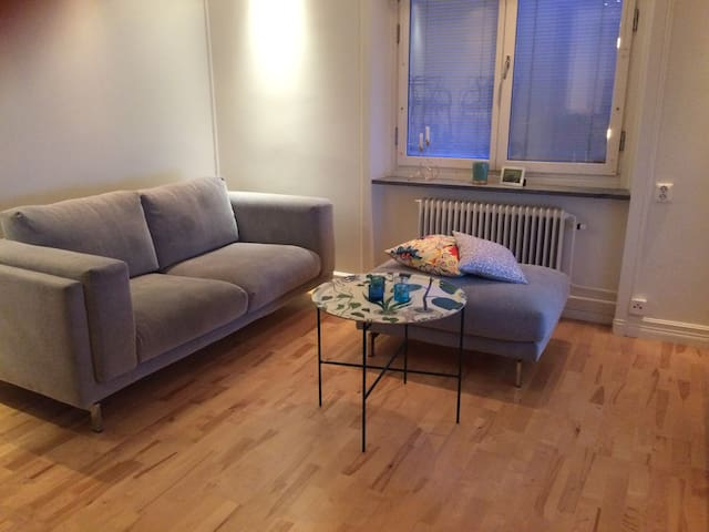 Cozy modern apartment in Stockholm - Sztokholm