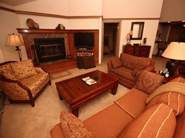 Living Room with Fireplace & TV (Sleeper Sofa also)