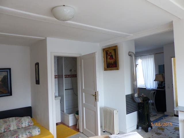 1-Zimmer-Apartment mit 30m²  - Oberhaid - Talo