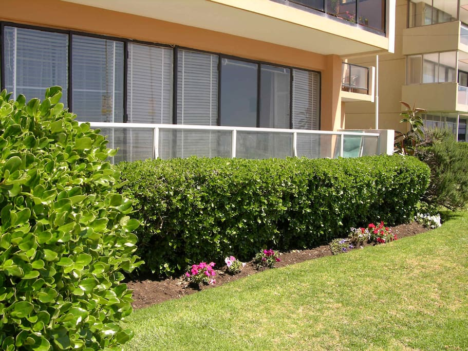 View of the apartment with the garden. The Pacific Ocean is just in front. It has a direct view to the Ocean