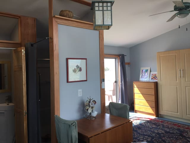 Dining & work table center. Murphy bed closed at right. Shower entrance & WC door at left.