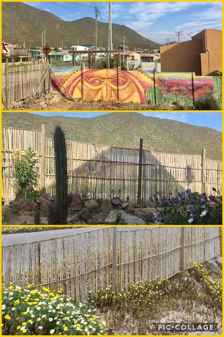 Cerco de colihues y jardín seco