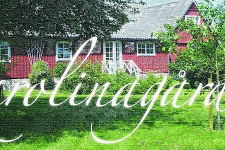 Charming 1900 century farm in the middle of Skåne - Tågarp - Bed & Breakfast