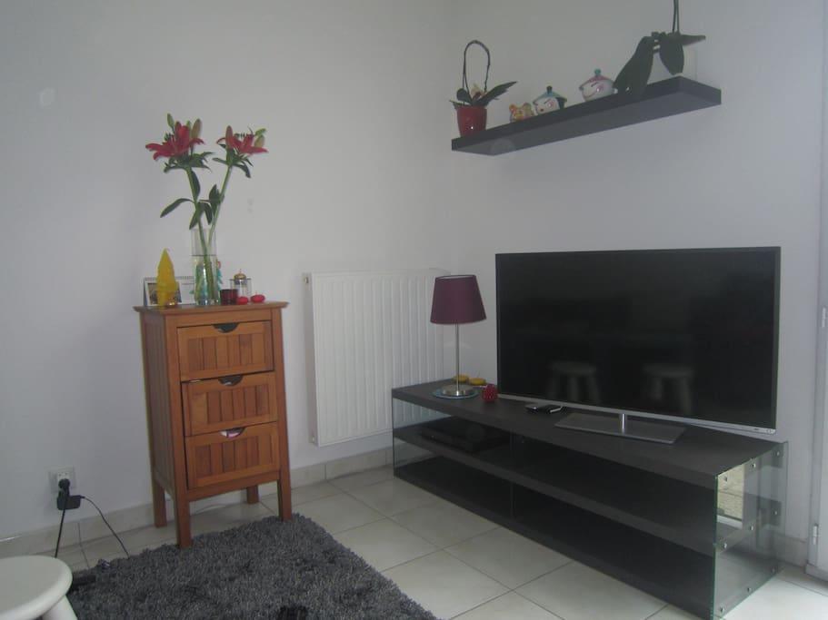 Coin télé et sofa