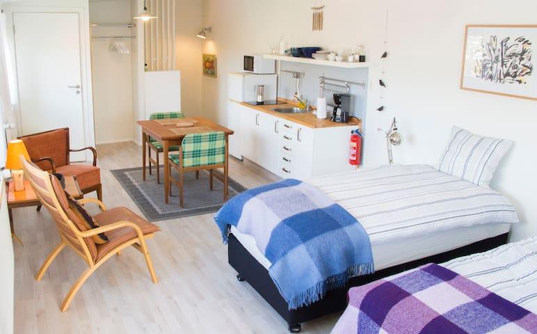Central, cozy studio apartment