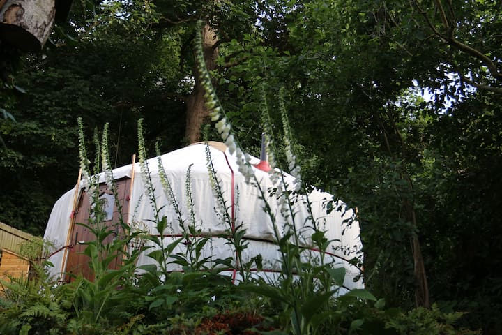 Garden Yurt less than 1hr from London - Aspley Guise - Jurta