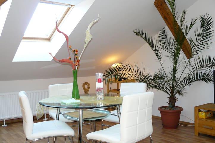 New, sunny studio apartment, 10min walk to centre
