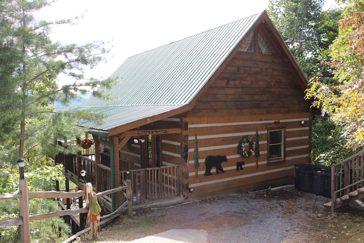 Log cabin with 3 king beds  and STUNNING VIEWS!