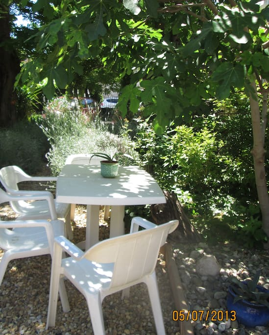 if it gets too hot on the terrace you can lunch under the fig tree!