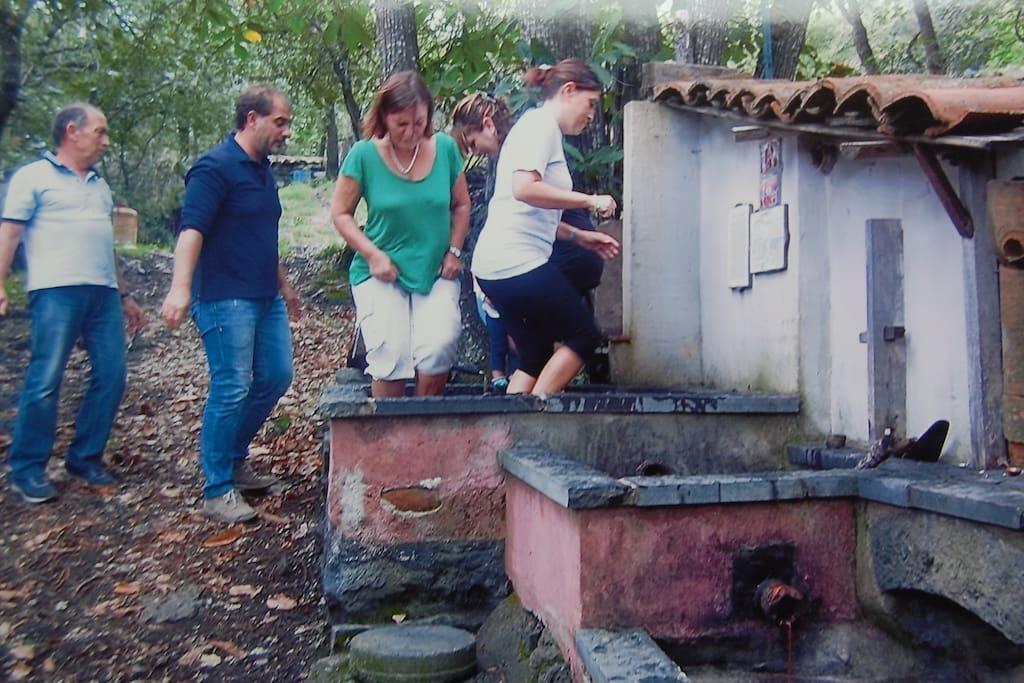 Pressing the grapes with the feet.