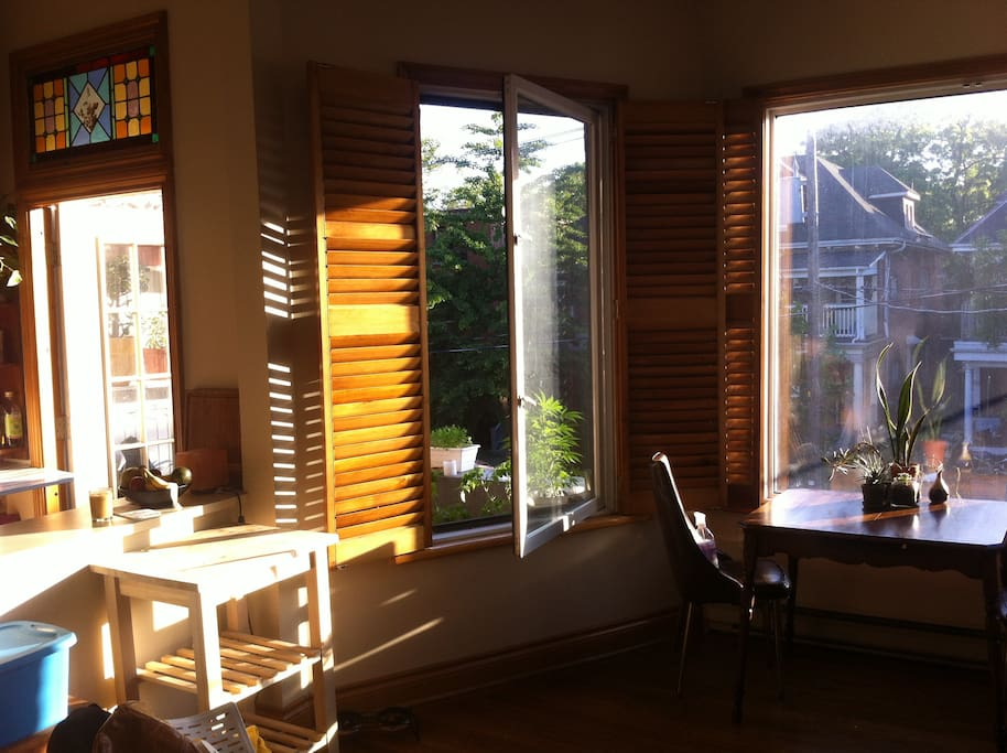 The apartment gets a lot of natural light.
