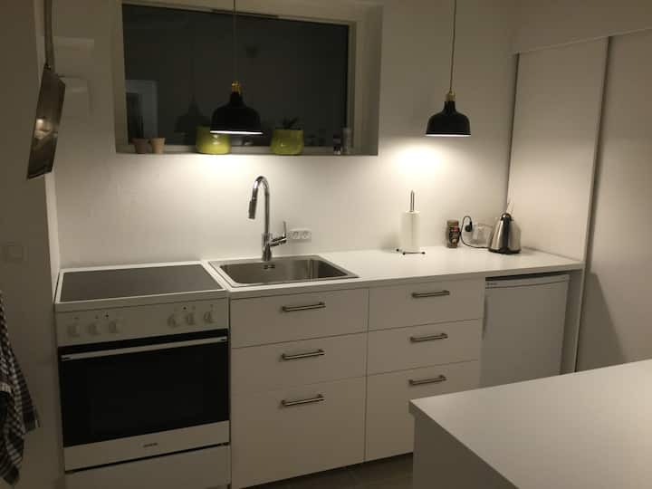 Kælderlejlighed i Hasseris / basement apartment