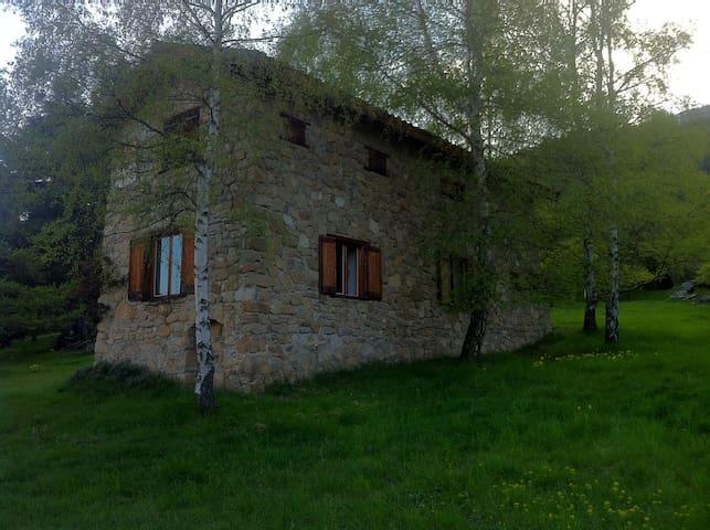 maison pleine nature 6/7 personnes - Beauvezer - Casa