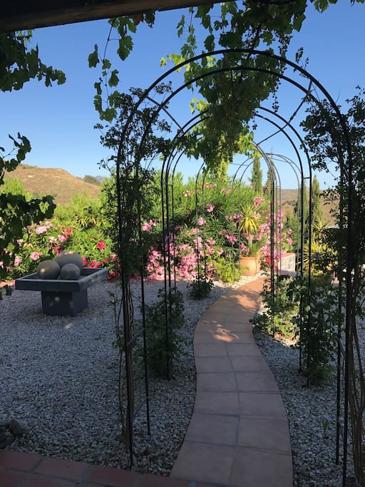 Archway leading to pool with fragrant David Austin Roses