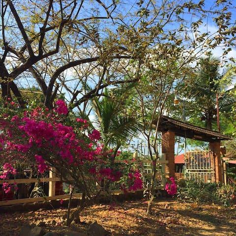 Quinta San Pancracio, Bajamar - Bajamar, Orotina