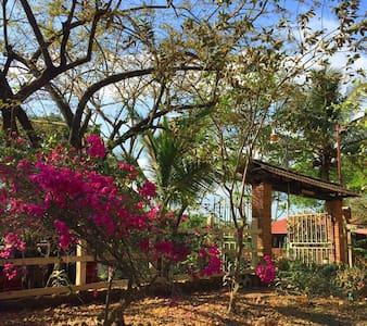 Quinta San Pancracio, Bajamar - Bajamar, Orotina - Rumah