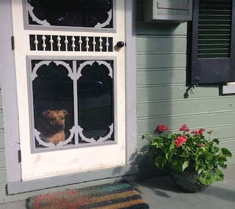 Historic Chestertown, pet friendly - House