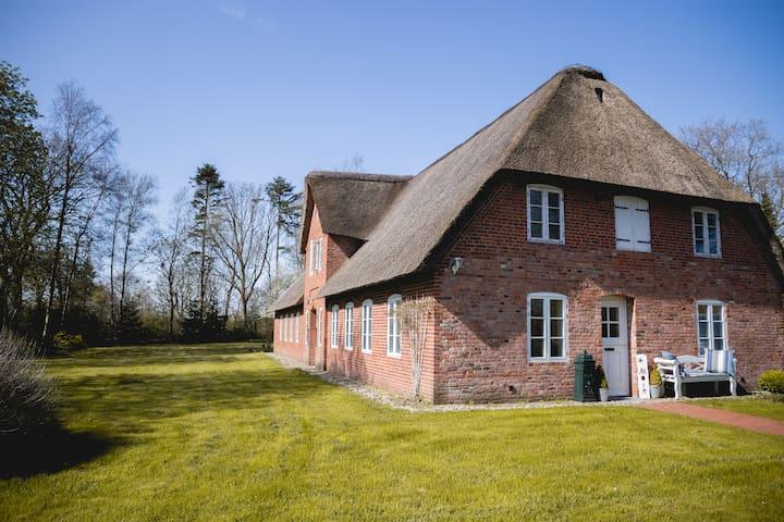 Küsten-Cottage: Hygge leben unter Reet