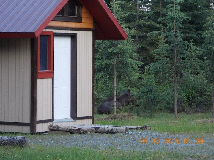 Heavens Little Acre #4  * Teddy Bear Cabin