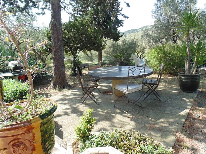 Le Mazet dans la guarrigue au coeur d'une olivaie