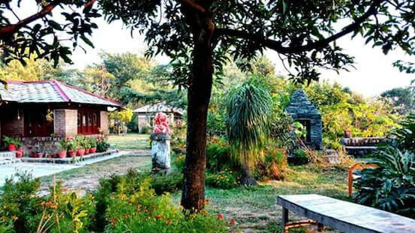Devbala Organic Farm (DORM) - Kangra - Ubytovna