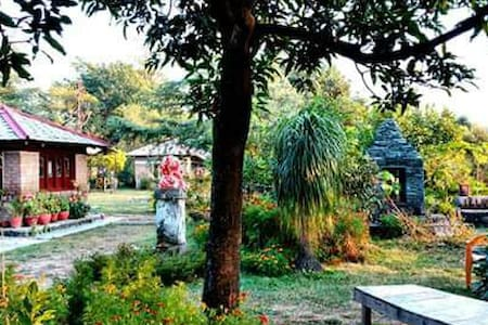 Organic Farm in Himalayan Foothills(DORM) - Kangra