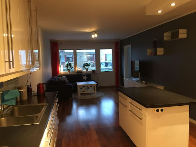 Nice apartment near Kista and Stockholm city