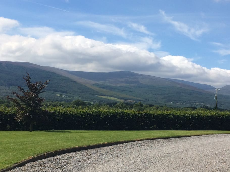 great views of the Galtee mountains