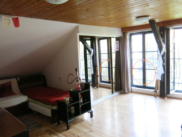 Spacious attic room - Liberec - Rumah