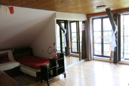 Spacious attic room - Liberec - Casa
