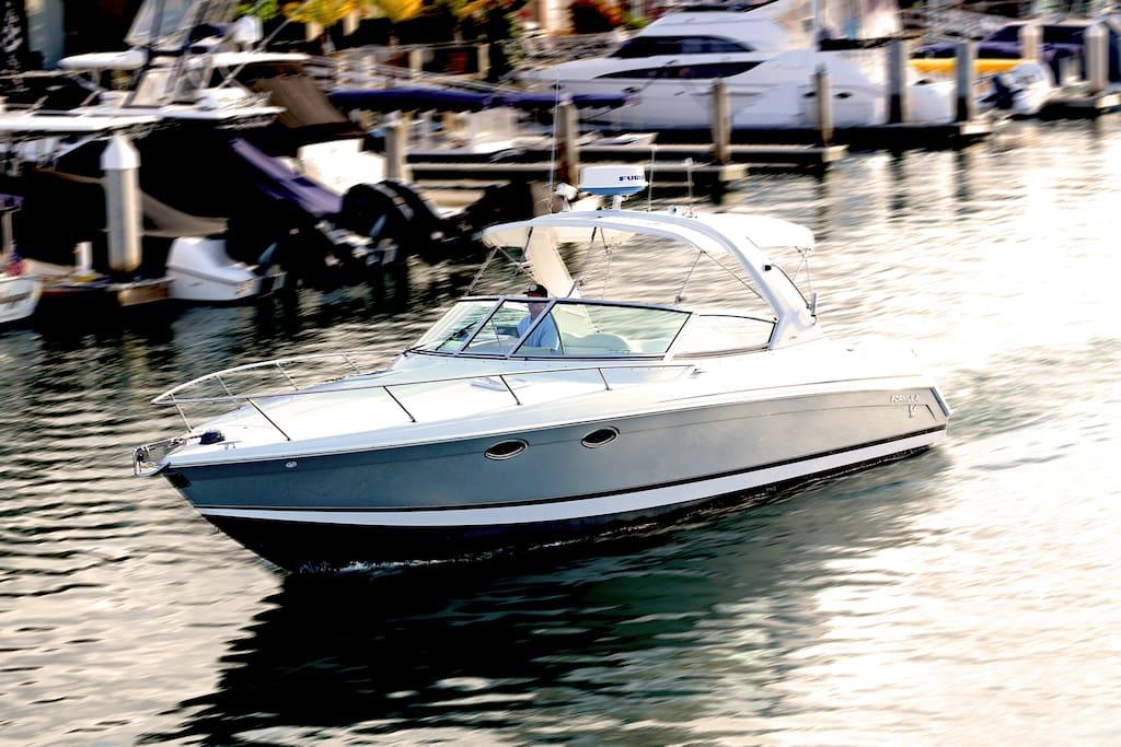 Catalina Cruiser Newport Beach