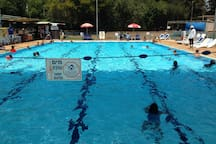 The swimming pool  at Moshav Shadmot Dvora open from June to September special entery price for our guests - 15 Shekels only instead of 40