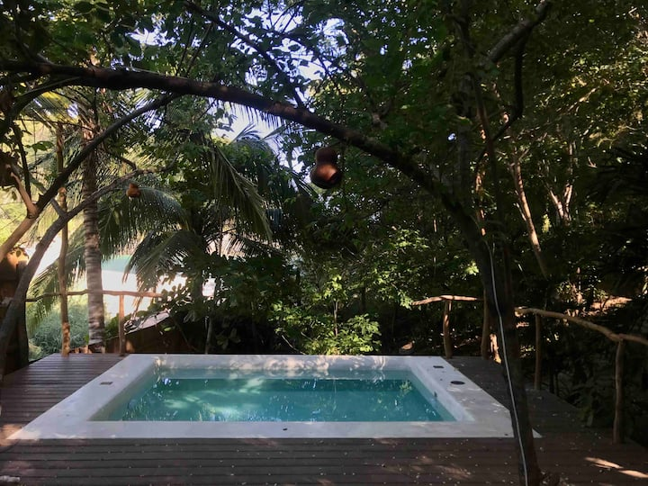 Secret virgin front bay pool house and tree casita