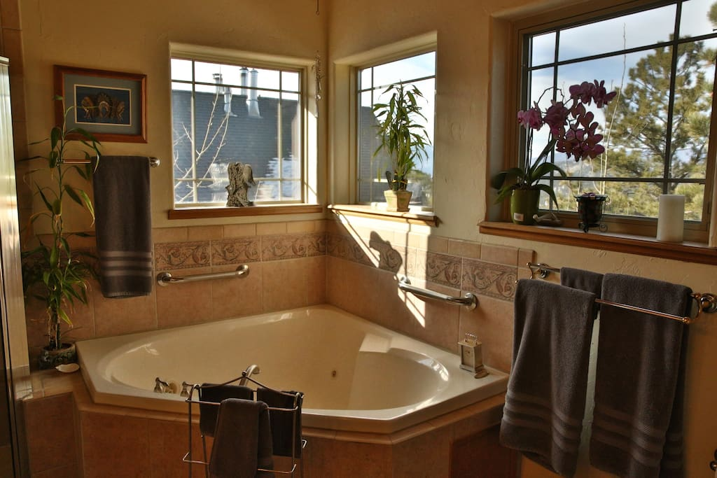 Bathroom with shower, jacuzzi tub and double sinks