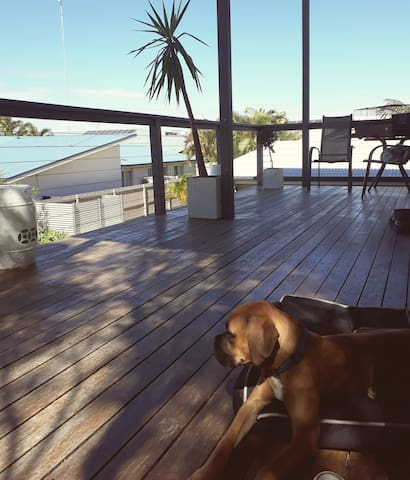 Relaxing Sunshine Coast Escape - Parrearra - Appartement
