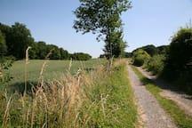 Surroundings [summer] (1-5 km)