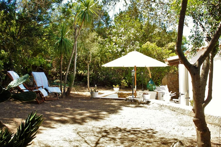 Whole House with garden in the center!! - Porto Rotondo - Huis