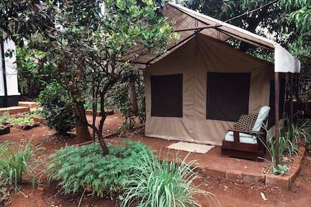 Shirikisha | Glamping Tent A - Moshi Urban - Çadır