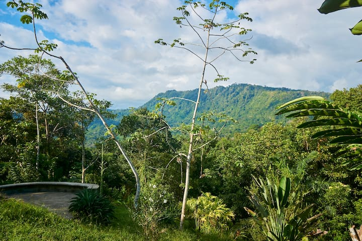 Jungle Getaway in the Hills Above Dominical