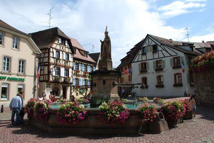 Place St Léon