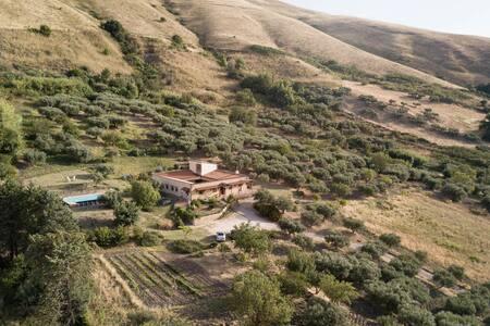 Costa del Conte - Sicilian Bio Experience | Room3