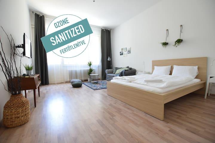 Hi5 Apartments 102- Charming Studio in the center