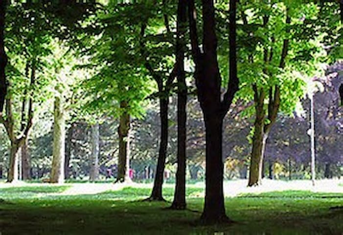 Monza Park / Parco di Monza prime location - Vedano al Lambro - Condominium