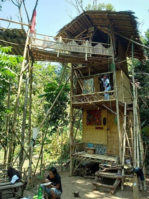 "Jungle art studio "" Sandalukareti """
