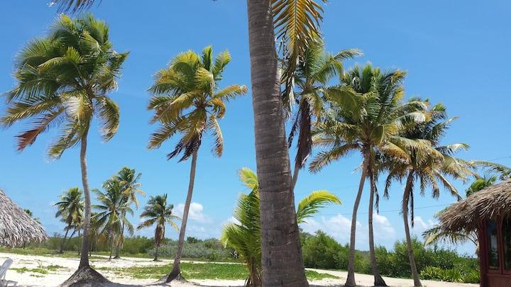 "Casa Del Sol ""Martha y El Teki "" Santa Lucia Cuba"