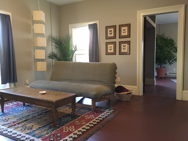 Living room with convertible couch.