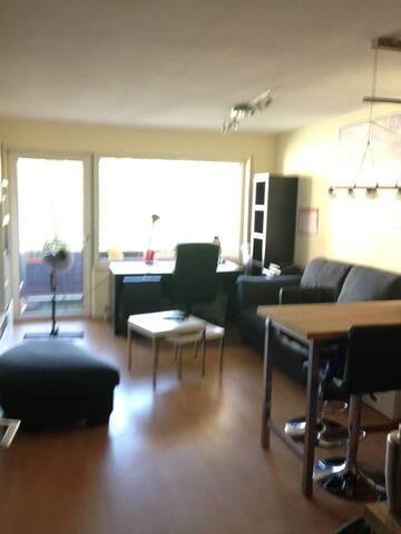 Gemütliches 1-Zimmer Apartment im Herzen Bayreuths - Bayreuth - Apartmen