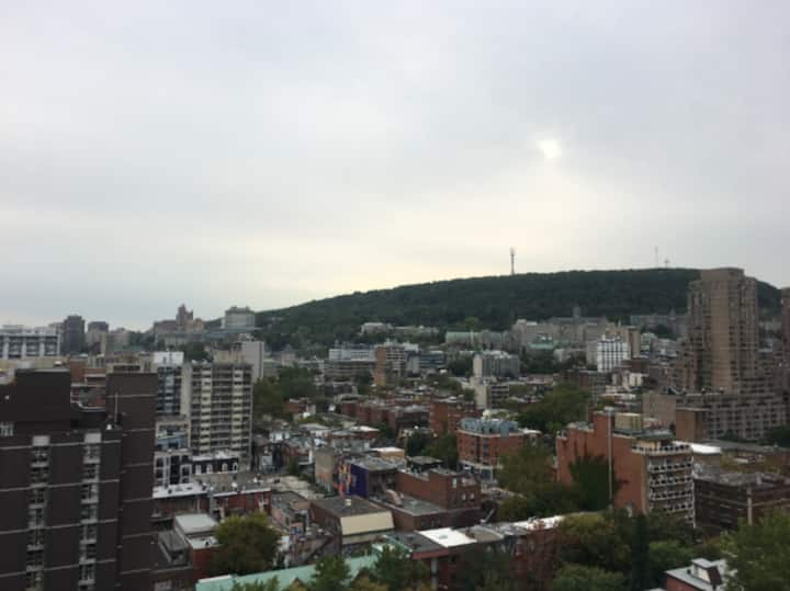 Penthouse Views of Montreal Skyline & the plateau!