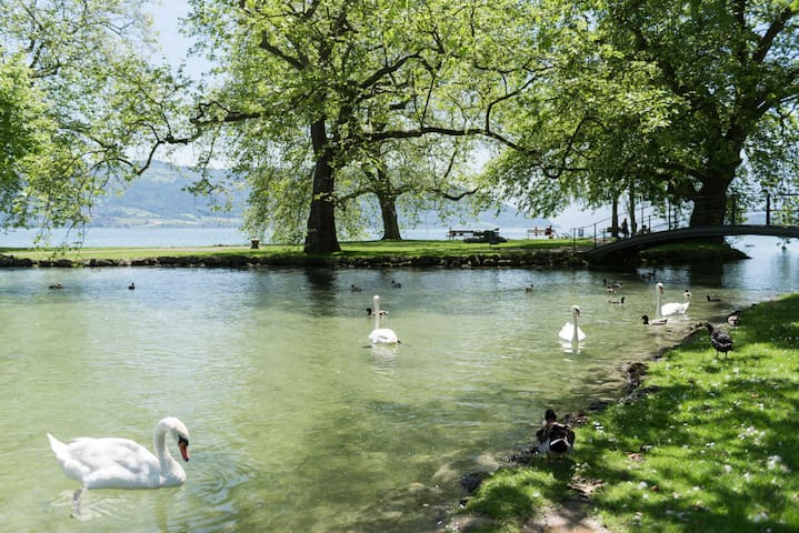 Lake Zug Two Bedrooms near Public Transportation - Cham - House
